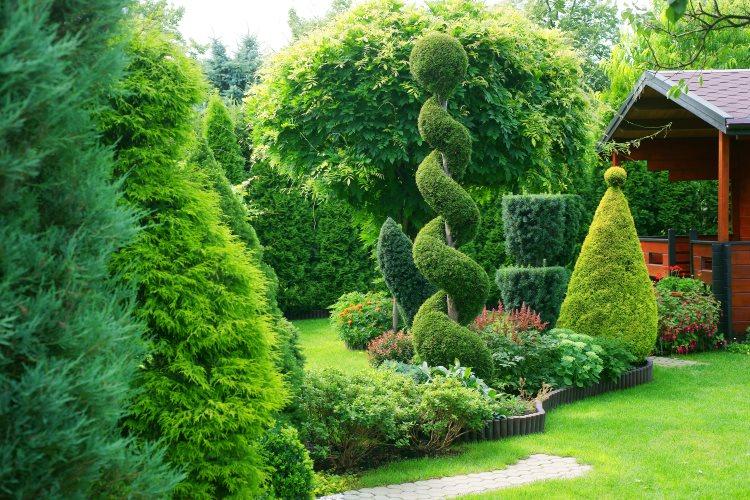 art-topiaire-jardin